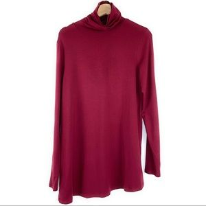 Peruvian Connection Turtleneck Tunic Top